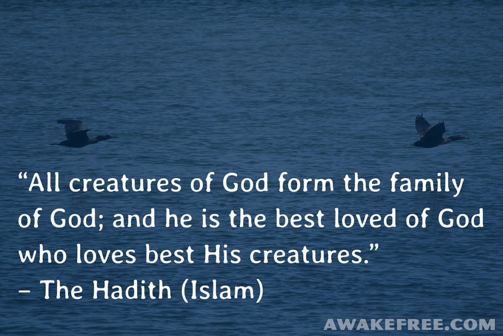 Peace-Quotes-All-Creatures-of-God-Hadith-Islam-AwakeFree.com