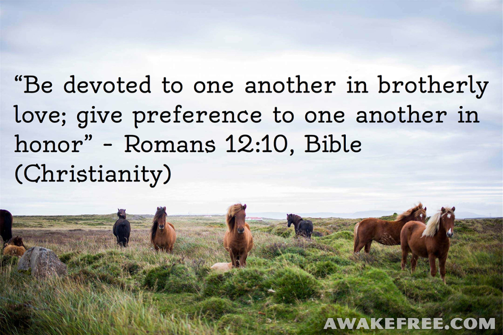 Peace-Quotes-Brotherly-Love-Romans-Bible-Christianity-AwakeFree.com