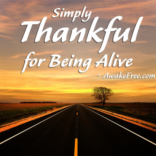 Thankful for Being Alive - A Key to Happiness
