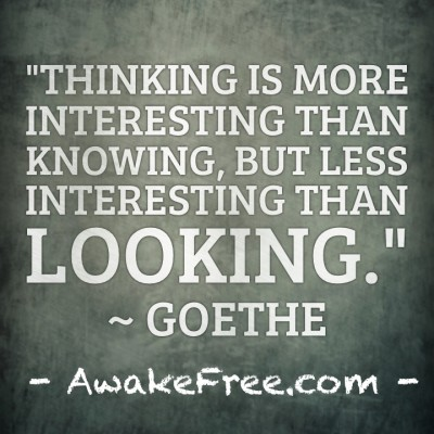 Thinking Knowing Looking ~ Goethe